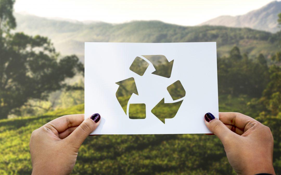 La sostenibilidad no es suficiente